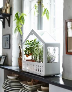 IKEA Fan Favorite: IKEA PS 2014 greenhouse. Suitable for both indoor and outdoor use, this fan fave provides a good environment for seeds to sprout and plants to grow.