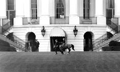 50 Years Ago: The World in 1962 - In Focus - The AtlanticIn this March 20, 1962 photo, President John F. Kennedy's daughter Caroline Kennedy rides her pony, Macaroni, on the south grounds of the White House in Washington. An unidentified handler runs along to keep pace. (AP Photo) #