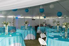 Blue & white tent wedding