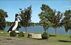 """""""The Loon"""". This statue of the Minnesota State Bird was built on the shore of Long Lake, through the efforts of the Vergas Fire Dept. The statue, which weighs 65000 pounds and is 21 feet tall was dedicated on June 20, 1963."""