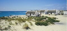 Seaside Cottages in Arniston, Western Cape, South Africa. The Beautiful Country, Beautiful Places, Places Around The World, Around The Worlds, Fishermans Cottage, African House, Seascape Paintings, Beach Art, Pictures To Paint