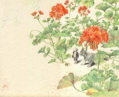 illustration by Joanna Concejo
