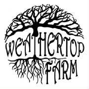 Weathertop Farm  963 Eanes Rd, NE  Check, VA 24072