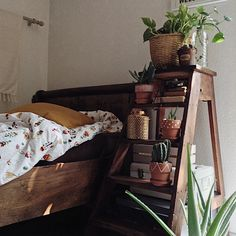 My little place and my little plants 〰 Pin: johannaxmancini