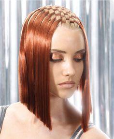 Google Image Result for http://evilspeculator.com/wp-content/uploads/2010/12/2010-12-09_copper_hair.png