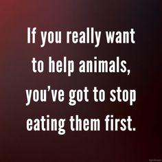 #endfactoryfarming #veganfortheanimals