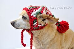 Stocking Dog Hat by CCCreativeCreations on Etsy