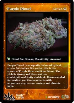 Purple Diesel | Repined By 5280mosli.com | Organic Cannabis College | Top Shelf Marijuana | High Quality Shatter