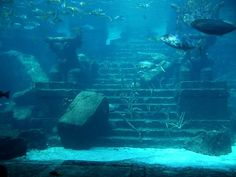 Atlantis, the ancient city that everyone is looking for. Described by Plato in Timaeus and Critias which were written in 360 BC, these texts contain the earliest references to Atlantis. For unknown reasons, Plato never completed Critias.Even though most scholars believe that Atlantis is just a ficti…