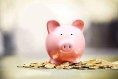 Como estabelecer uma boa gestão financeira e qual a sua importância para sua organização sem fins lucrativos.