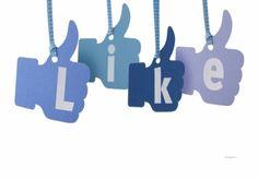 I will sell 1000 real facebook likes for for $10 : nameless - NetJobs24.net