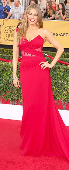 Sofia Vergara: 2015 SAG Awards