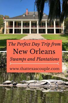 A trip to New Orleans isn't complete without getting out of the city.  Here we take you on the perfect day trip from New Orleans to go on a fun swamp tour before visiting a historic plantation on River Road.  #louisianatourism #smamptour #thingstodoinneworleans #louisianaplantations via @https://www.pinterest.com/thattexascouple
