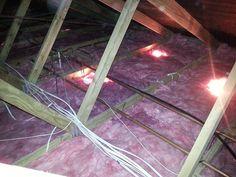 Aerolite ceiling insulation Durban Roof Insulation, Ceiling
