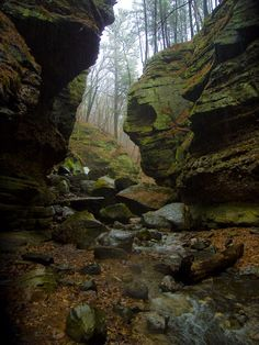 10 Trails In Wisconsin You Must Take If You Love The Outdoors
