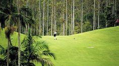 Bonville Golf Course