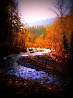 LVG Photography: Abiqua Creek, Silverton Oregon