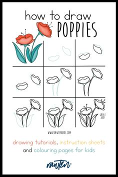 Draw Flowers, Hand Flowers, Flower Petals, Poppy Drawing, Line Drawing, Draw Two, Leaf Shapes, Art Drawings Sketches, Learn To Draw