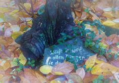 Schläft ein Lied...., Herbst - Foto: S. Hopp
