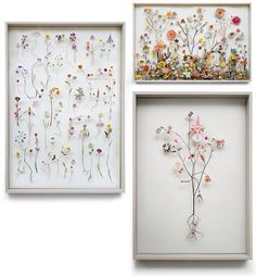 Pressed flower collage