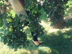 http://theprettybaby.blogspot.com/2012/07/last-day-in-rajec.html