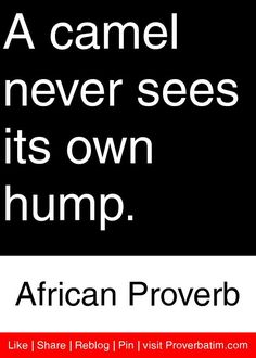 A camel never sees its own hump.  - African Proverb #proverbs #quotes