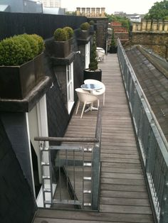 Box planters on roof terrace
