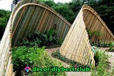 More from my Unique Garden Fence Decoration Unique Garden Fence Decoration Backyard & Garden Fence Decor Fantastic Ideas For Decorating Your Garden Awesome DIY Painted Garden Decoration Ideas for a. Bamboo House, Bamboo Fence, Bamboo Fencing Ideas, Bamboo Garden Ideas, Bamboo Ideas, Bamboo Trellis, Bamboo Art, Bamboo Crafts, Metal Fence