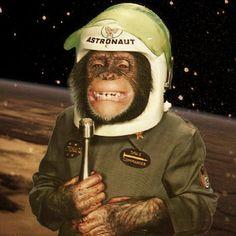 monkey astronaut movie - photo #18