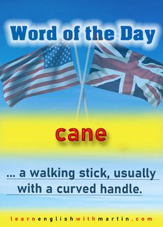 … a walking stick, usually with a curved handle.  Example: He wore a grey suit and leaned heavily on his cane.