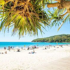 Sorry, we can't come to the phone right now - we're busy lazing on the beach in @visitnoosa 😎 This laid-back part of the @visitsunshinecoast is the ideal place for a cruisy beach getaway. However, ifyou prefer sophistication over sandals, you're in luck - #Noosa's not all about the sunscreen and the flip-flops. Wander down to Hastings Street and you'll discover classy restaurants, bars, boutiques and galleries tucked into every nook and cranny.  Photo: @kylerauphotography #visitnoosa…