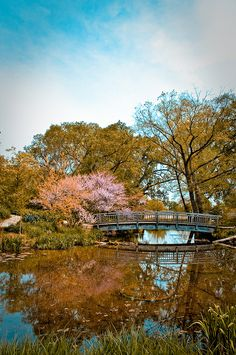 Olbrich Botanical Gardens, Madison, Wisconsin