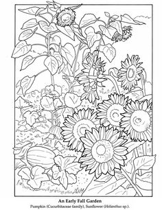 @complicolor color it Printable pages and Coloring books for grown-ups at: http://www.complicatedcoloring.com #flowers #coloring