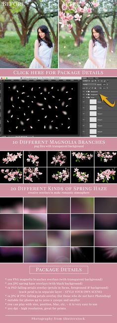 """All in One"" pack – all you need to style romantic spring pictures. Great for spring pictures, wedding & couples photography, portraits etc. PACKAGE DETAILS: - Magnolia branches, Falling magnolia petals & Spring Hazes Overlays - suitable for photos up t Photoshop Logo, Photoshop Overlays, Photoshop Tutorial, Photoshop Actions, Photoshop Youtube, Adobe Photoshop Elements, Photography Lessons, Photoshop Photography, Photography Portraits"