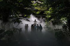 Japão temple enveloped in mist 2