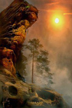 Autochtone: Photo: La nature dans toute sa splendeur