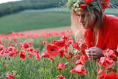 Watching fairies by Eliza Frydrych, via Flickr