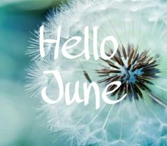 It's Friday and the start of a new chapter 😊 Days Of Week, Days And Months, Months In A Year, Summer Months, June Quotes, New Month Quotes, June Pictures, Holiday Pictures, Facebook Image