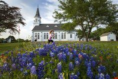 Painted Churches - Houston to San Antonio