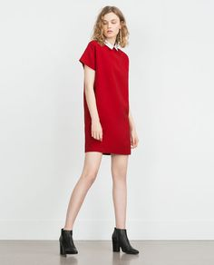 Image 1 of POPLIN COLLAR DRESS from Zara