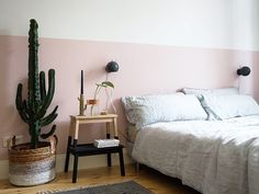 Beautiful living room with a half-painted pink wall, a large cactus and a wooden bedside table.