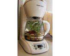 Cute.  Old coffee maker being used as a Beta Fish tank.  I think this would look awesome on kitchen counter