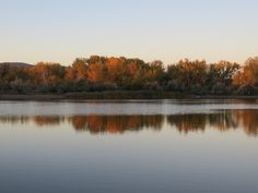 Love the reflective qualities of water!  Pond by the eastside dog park, Casper, Wyoming.