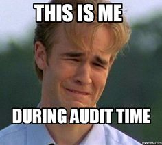 This is me during audit time. :)