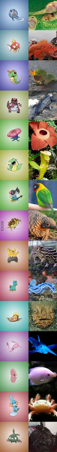 15 Pokemons You Didn't Realize Were Based On Real World Things http://9gag.com/gag/aYpEyBx?ref=fsidebar