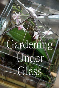Gardening Under Glass