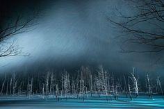 Hokkaido, Japan       雪の中の「青い池」(北海道・美瑛)