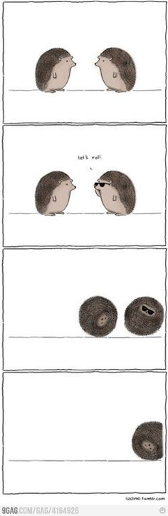 Funny pictures about Let's roll. Oh, and cool pics about Let's roll. Also, Let's roll. Liz Climo Comics, Angst Im Dunkeln, Haha, Funny Animals, Cute Animals, Lets Roll, Cute Hedgehog, Hedgehog Care, Cute Comics
