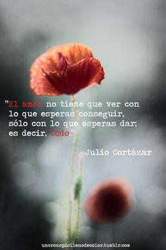 Julio Cortázar                                                       …