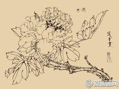 工笔画白描牡丹图片大全,各种线描牡丹花图谱系列高清大图